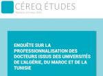 Enquête sur la professionnalisation des docteurs issus des universités de l'Algérie, du Maroc et de la Tunisie