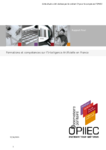 Formations et compétences sur l'Intelligence Artificielle en France