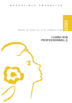 Jaune2020_formation_professionnelle_(1).pdf - application/pdf