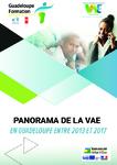 Panorama de la VAE en Guadeloupe entre 2013 et 2017