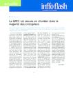 La GPEC est encore en chantier dans la majorité des entreprises